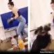 Idaho Woman Boxing her Dog on Snapchat Triggers Humane Investigation