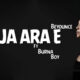 Beyoncé - JA ARA E Lyrics | The Lion King Album