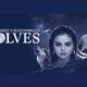 Selena Gomez - Wolves lyrics | Perfect Pop Album