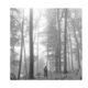 taylor swift the 1 lyics folklore album