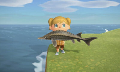 List of new fish and bugs for August in Animal Crossing- New Horizons