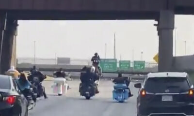 Chicago's 'Dreadhead Cowboy' arrested after riding a horse on expressway